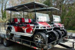 Sister carts